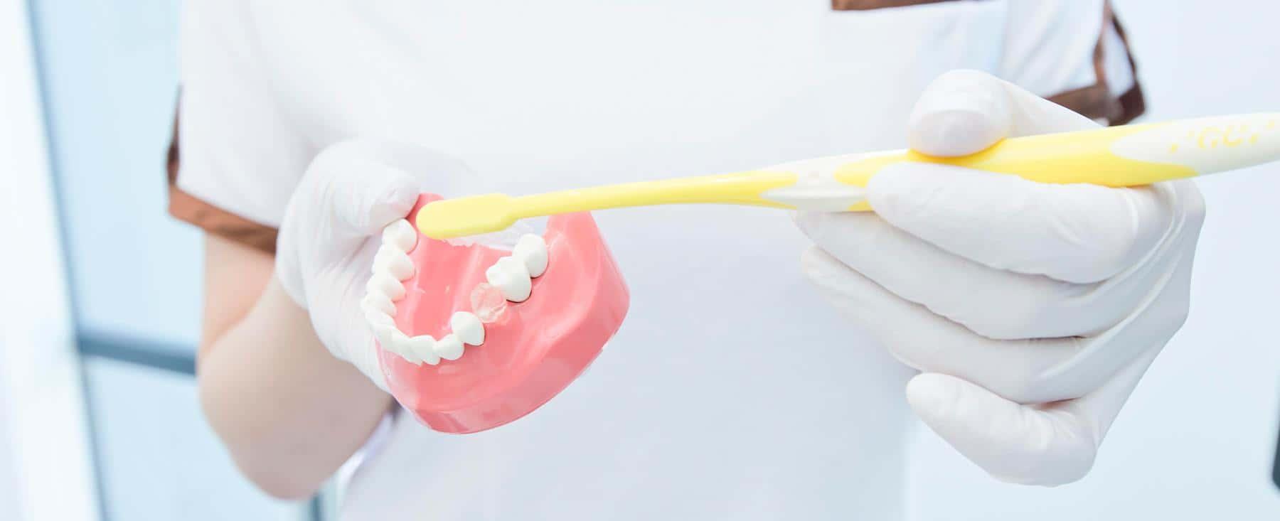 予防 虫歯 歯周病